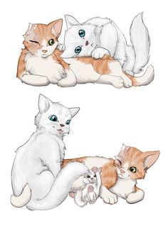 Cloudtail, Brightheart and Whitekit---OMG I just noticed that he is listening to Whitekit before he is born!