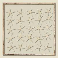 25 Natural Pencil Starfish Framed
