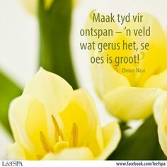 Inspiration For The Day, Goeie More, Afrikaans Quotes, Happy Relationships, Godly Woman, Printable Quotes, Daily Motivation, Me Quotes, Inspirational Quotes