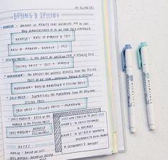 Cute Notes//Blue
