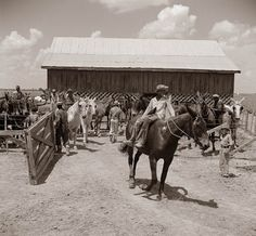 Today's picture shows the yard where men and animals got an hour lunch break from work in the field. They were cultivators, responsible for ...