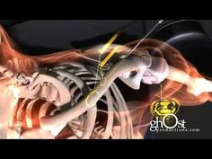 Wow very cool see how the body is fixed by modern medicine in 2012 Medical Animation - Heal: ghOst Production's 2009 Orthopedic Demo Reel