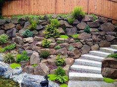 Steingarten Gestalten steingarten mit wasserfall und immergrünen pflanzenarten
