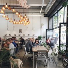 rustic roots Cream in London . cafe allows pets too London Coffee Shop, London Cafe, Best Coffee Shop, Coffee Shops, Coffee Bars, Coffee Shop Aesthetic, Restaurant Lighting, Cafe Bistro, Cool Cafe