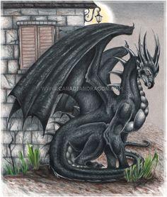 "dragon  | Canadian Dragon Fantasy Art: Original Black Dragon Drawing ""Lock your ..."