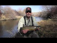 Recognizing and Protecting Brown Trout Spawning Areas - YouTube