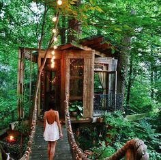 Enchanted treehouse