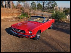 W267 1965 Ford Mustang Convertible 289 CI, Automatic Photo 1