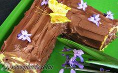 Csokoládés fatörzs recept fotóval