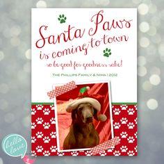 photo christmas card - santa paws dog pet holiday. $16.00, via Etsy.  PHOTO COURTESY OF FETCH-IT PHOTOGRAPHY, BOSTON, MASS. www.facebook.com/FetchItPhotography