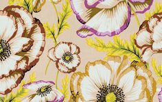 VINTAGE - 1/2 Yard Kaffe Fassett Collective Fabric - 100% Cotton Quilt Fabric - Phillip Jacobs - Banded Poppy - Taupe by lavenderquiltsllc on Etsy