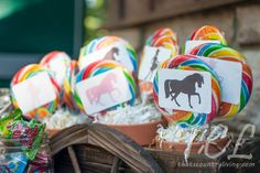 Tips and Ideas for a Pony Party