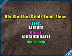Stadt-Land-Fluss / Elefant