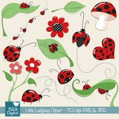 Little Ladybug Digital Clipart - Scrapbooking , card design, invitations, stickers, paper crafts, web design - INSTANT DOWNLOAD