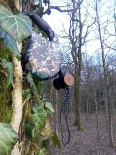 geocaching funny caches   1000+ ideas about Geocaching Containers on Pinterest   Geocaching ...