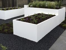 Garden Yard Ideas, Garden Spaces, Garden Landscaping, Natural Swimming Pools, Small Garden Design, Concrete Planters, Garden Fencing, Planter Boxes, Garden Inspiration