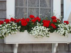 34 Vintage Garden Decor Ideas to Give Your Outdoor Space Vintage Flair - The Trending House Window Box Plants, Window Box Flowers, Window Planter Boxes, Flower Boxes, Lace Window, Balcony Flower Box, Flower Planters, Potted Flowers, Geranium Planters
