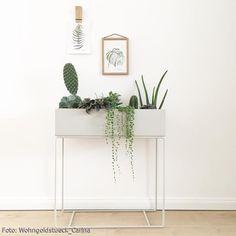 fermliving Plantbox in Szene gesetzt mit Grünpflanzen. Weißer Urban Jungle Stil. #interior Mehr Inspiration auf roomido.com