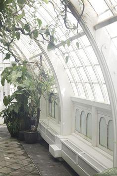 Conservatory of Flowers - Golden Gate Park - San Francisco