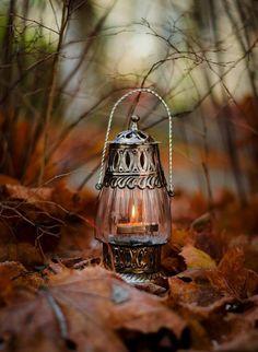 Lovely Fall image