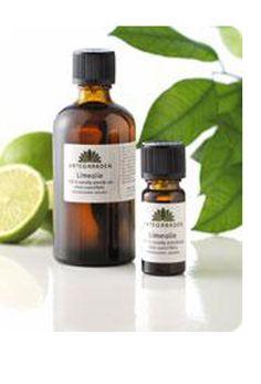 Brug æteriske olier i dit hjem, og få bugt med både mug og skadedyr - vi viser dig hvordan.