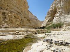 Ein Avdat by Yair Tours Israel © Yair Nabet
