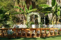flora farms wedding venue | Wedding & Event Venues in Mexico | Estate Weddings and Events