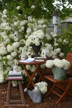 Nest Feathering with Birdhouses, Dishes and  Chinese Snowball Viburnum | homeiswheretheboatis.net #spring #garden #bird