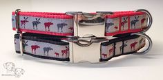 Elk collars for Christmas