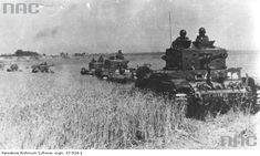 10 Pułk Strzelców Konnych podczas bitwy pod Falaise / Źródło: Narodowe Archiwum Cyfrowe, sygn. 37-524-1