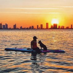 Happy #nationalpetday from Miami  by @leesea78 #miami #miamibeach #paddleboarding #sunset #miamilife