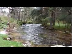 truchas a ninfa con perdigon - Fly fishing trout with nymph - YouTube