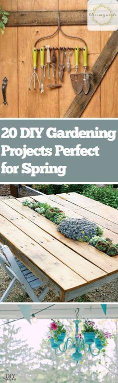 Spring Gardening, Spring Gardening Projects, DIY Projects, DIY Outdoor Projects, Gardening 101, Easy Gardening Projects, Spring Projects, DIY Outdoor Projects, Simple Spring Projects, Popular Pin