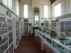 Shell Museum Norfolk