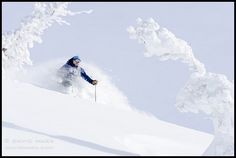 Chest Deep Powder Skiing in the Baldy Knoll Backcountry by David Marx, via Flickr