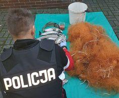 Policjanci z Ustki zatrzymali 34-letniego kłusownika podejrzanego o nielegalny połów i handel trocią wędrowną.#ustka24info Sports, Fashion, Moda, La Mode, Sport, Fasion, Fashion Models, Trendy Fashion