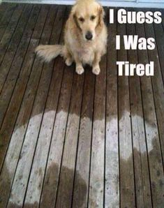 I was tired