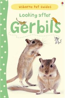 Usborne pet guides: Looking after gerbils by Laura Howell 636.9 HOW