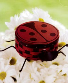 Collectors Club Ladybug Basket from 2009