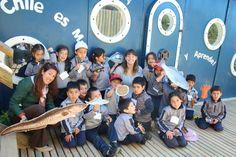 Semana de la Ciencia en Estación Costeras de Investigaciones Marinas junto a Chile es Mar