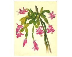 Illustration pink flower watercolor by BotanicalVintageArt on Etsy