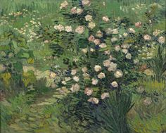 Vincent van Gogh, Roses, 1889, oil on canvas, 33 x 41.3 cm, The National Museum of Western Art, Tokyo.