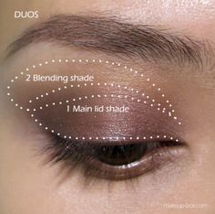 Applying 2 Colors Of Eyeshadow