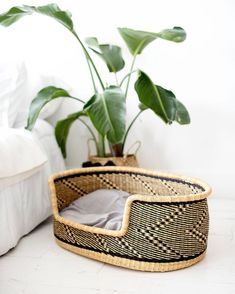 17  Stylish Boho Dog Beds You and Your Fur Kids Will Love  feat. Handmade Woven Dog Bed Basket from Zuri Rose Boho Bedding, Black Bedding, Bohemian Interior Design, Decor Interior Design, Bohemian Chic Home, Baby Changing Pad, Moses Basket, Dog Beds, Boho Decor