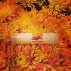 Try my delicious, organic Pumpkin Spice lip balm!  I also have an organic Pumpkin Spice body butter to compliment!  Both are available at ALONATURALS.COM
