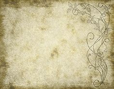 Faded and worn floral design on old paper or parchment texture parchment walls and worn parchment paper old rough and grungy paper or parchment toneelgroepblik Images
