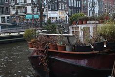 New York could really learn a thing or two from Amsterdam about container gardening. It seems like every other house has a collection of m. Floating Boat, Floating House, Canal Barge, Landscape Background, Ways To Travel, Home And Away, Container Gardening, Holland, Amsterdam