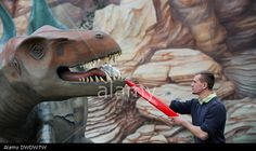 Kleinwelka, Germany. 5th Mar, 2014. Employee cleans life-sized model of a Tyrannosaurus with a large toothbrush at the dinosaur park in Kleinwelka. Credit: Arno Burgi/dpa/Alamy Live News