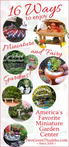 Find many different ways to enjoy your miniature or fairy gardening!