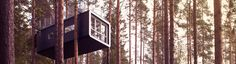 Treehotel's Cabin is a Unique Lofted Retreat